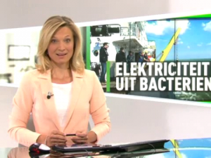 News item on Belgian National television