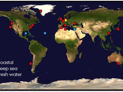A global phenomemon